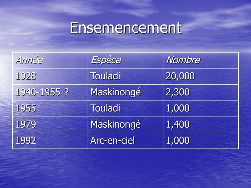 Ensemencement Année Espèce Nombre 1928 Touladi 20,000 1940-1955