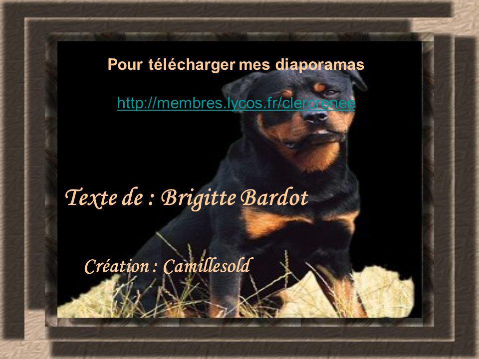 Pour télécharger mes diaporamas http://membres.lycos.fr/clercrenee