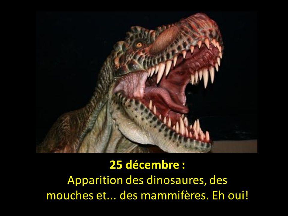Apparition des dinosaures, des mouches et... des mammifères. Eh oui!