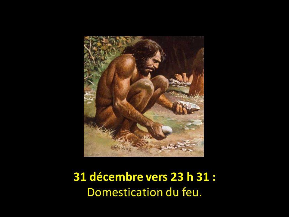 31 décembre vers 23 h 31 : Domestication du feu.