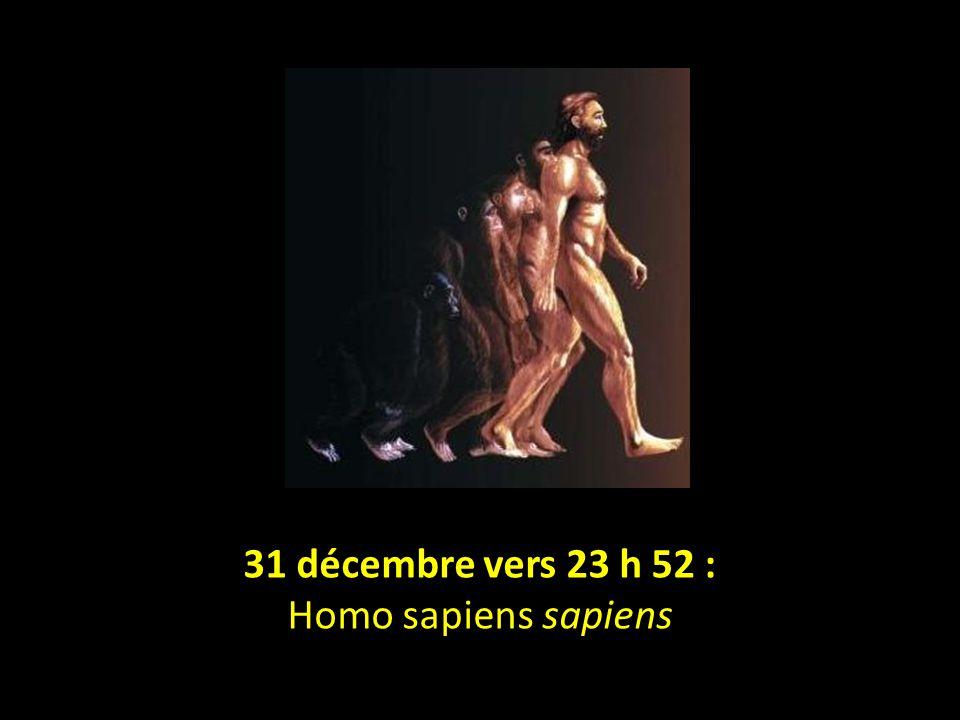 31 décembre vers 23 h 52 : Homo sapiens sapiens