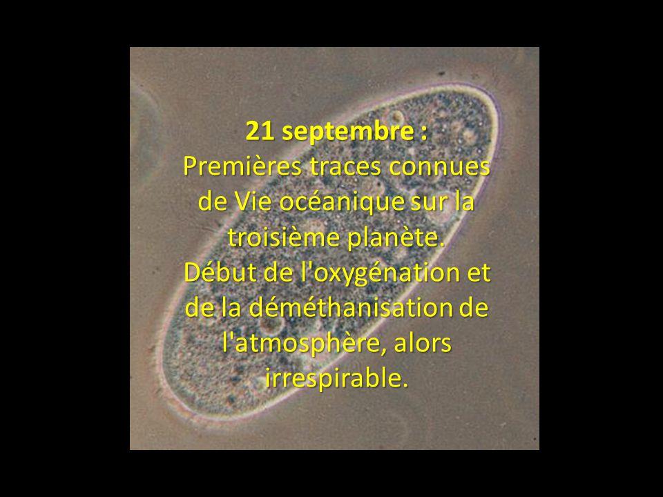 Premières traces connues de Vie océanique sur la troisième planète.