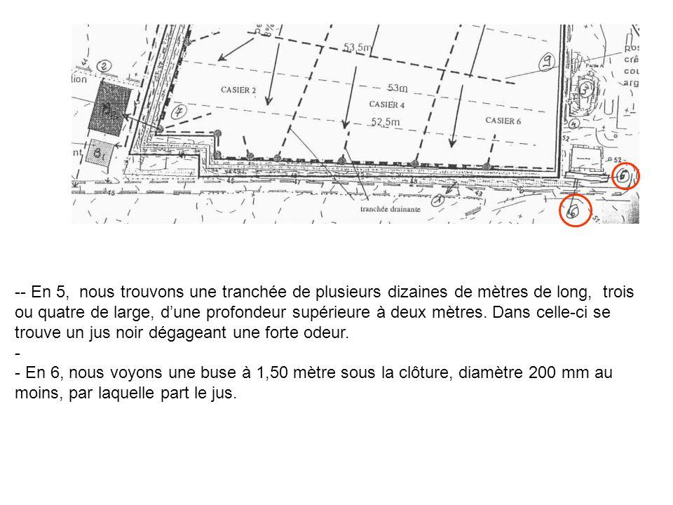 - En 5, nous trouvons une tranchée de plusieurs dizaines de mètres de long, trois ou quatre de large, d'une profondeur supérieure à deux mètres. Dans celle-ci se trouve un jus noir dégageant une forte odeur.