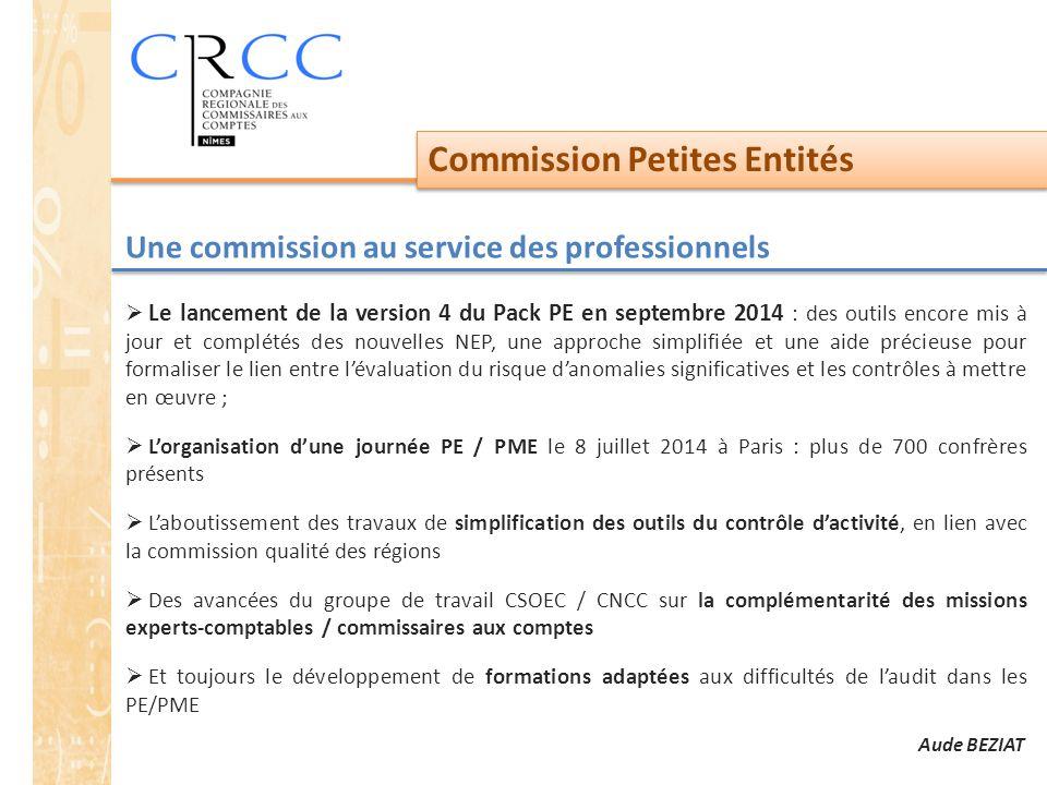 Commission Petites Entités