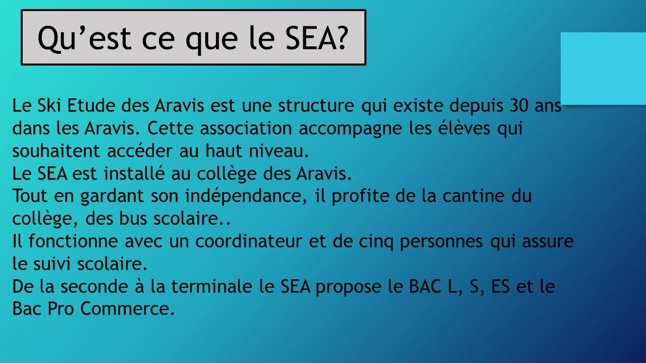 Qu'est ce que le SEA