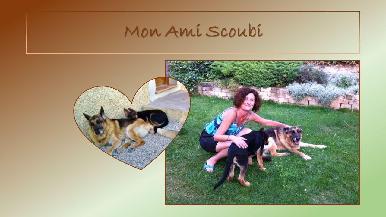 Mon Ami Scoubi
