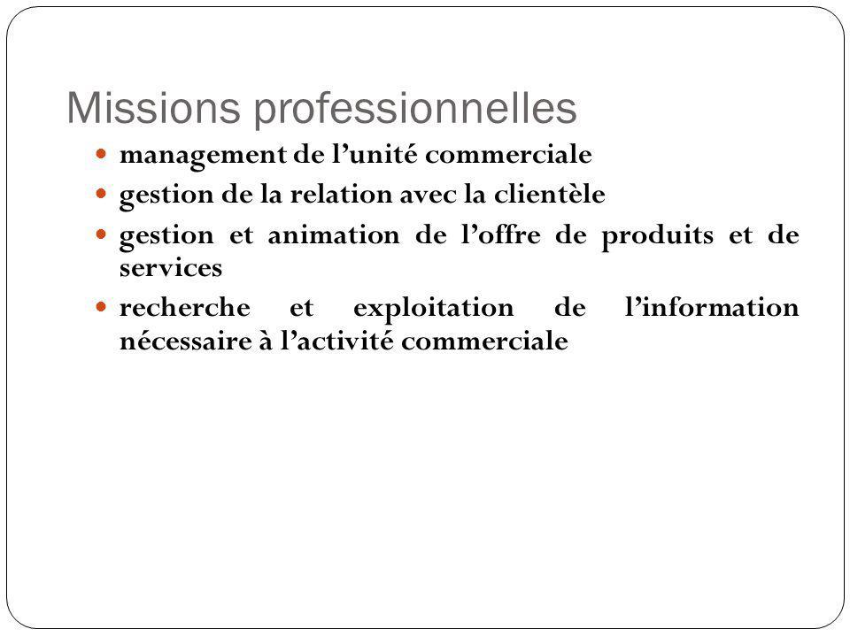 Missions professionnelles