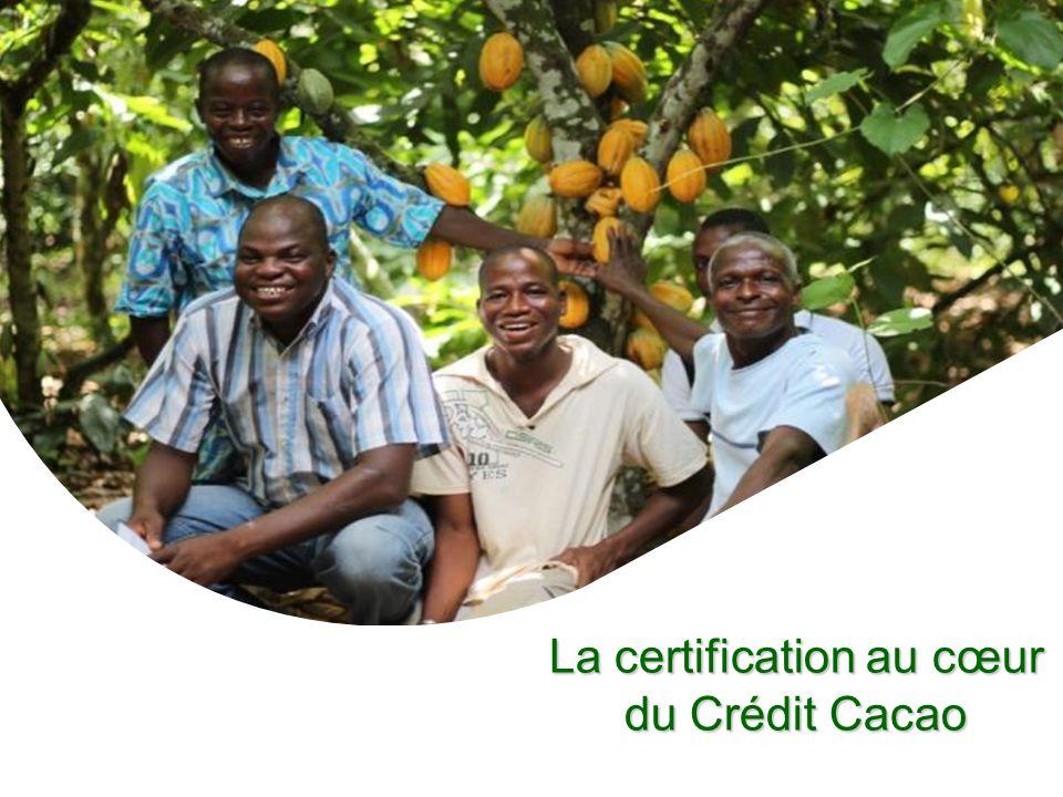 La certification au cœur du Crédit Cacao