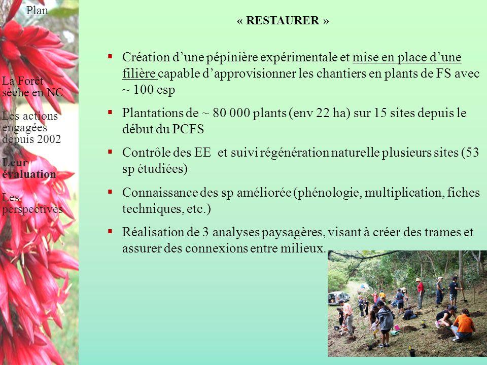 Plan La Forêt sèche en NC. Les actions engagées depuis 2002. Leur évaluation. Les perspectives. « RESTAURER »