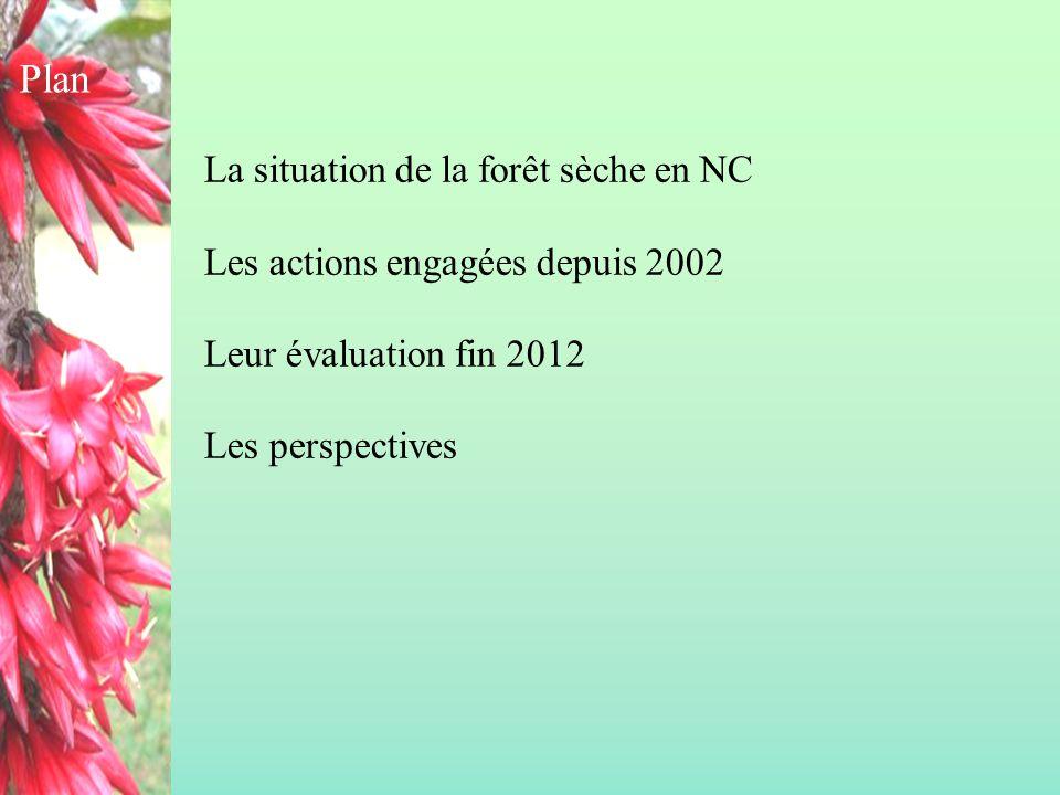 Plan La situation de la forêt sèche en NC Les actions engagées depuis 2002 Leur évaluation fin 2012 Les perspectives.