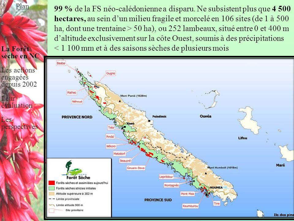 Plan La Forêt sèche en NC. Les actions engagées depuis 2002. Leur évaluation. Les perspectives.