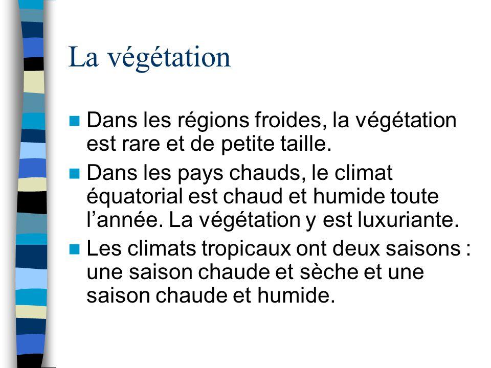 La végétation Dans les régions froides, la végétation est rare et de petite taille.