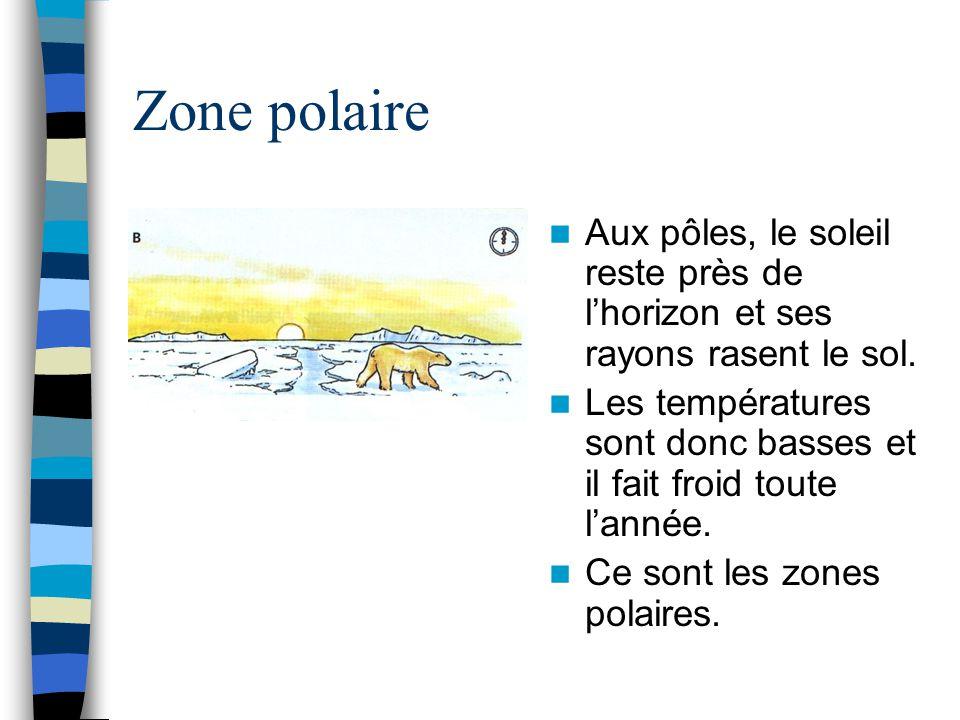 Zone polaire Aux pôles, le soleil reste près de l'horizon et ses rayons rasent le sol.