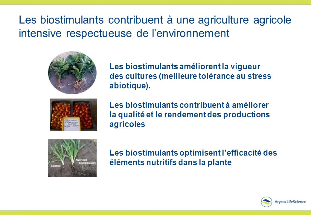 Les biostimulants contribuent à une agriculture agricole intensive respectueuse de l'environnement