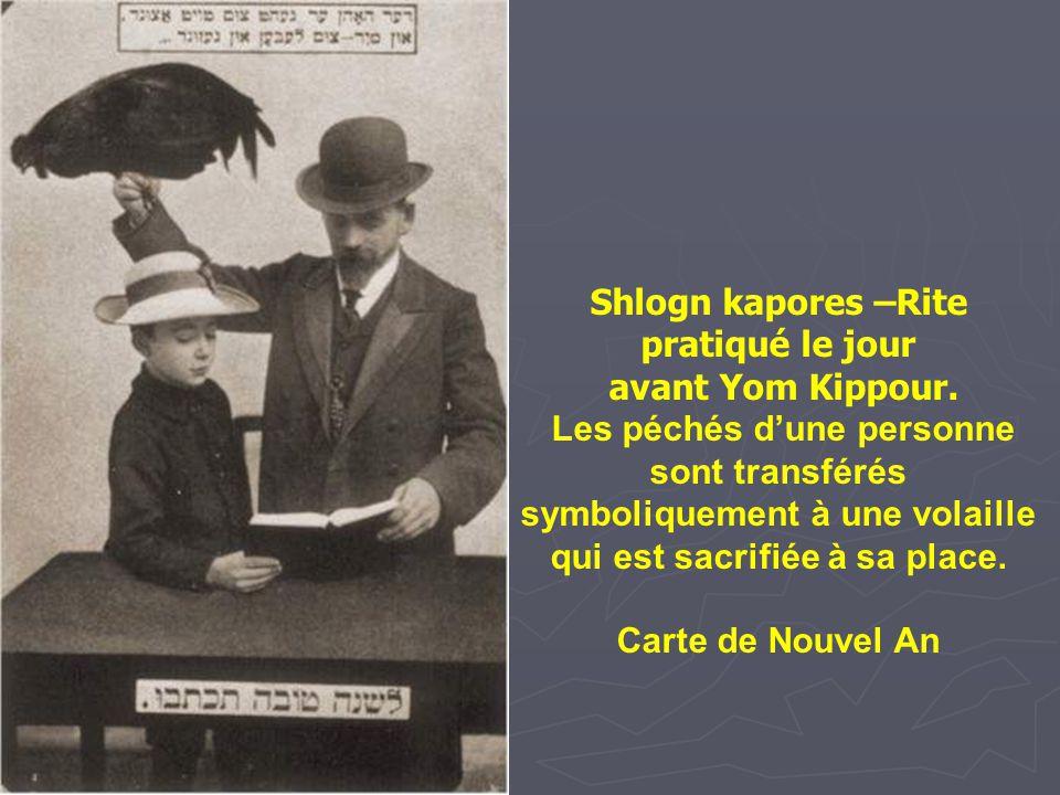Shlogn kapores –Rite pratiqué le jour