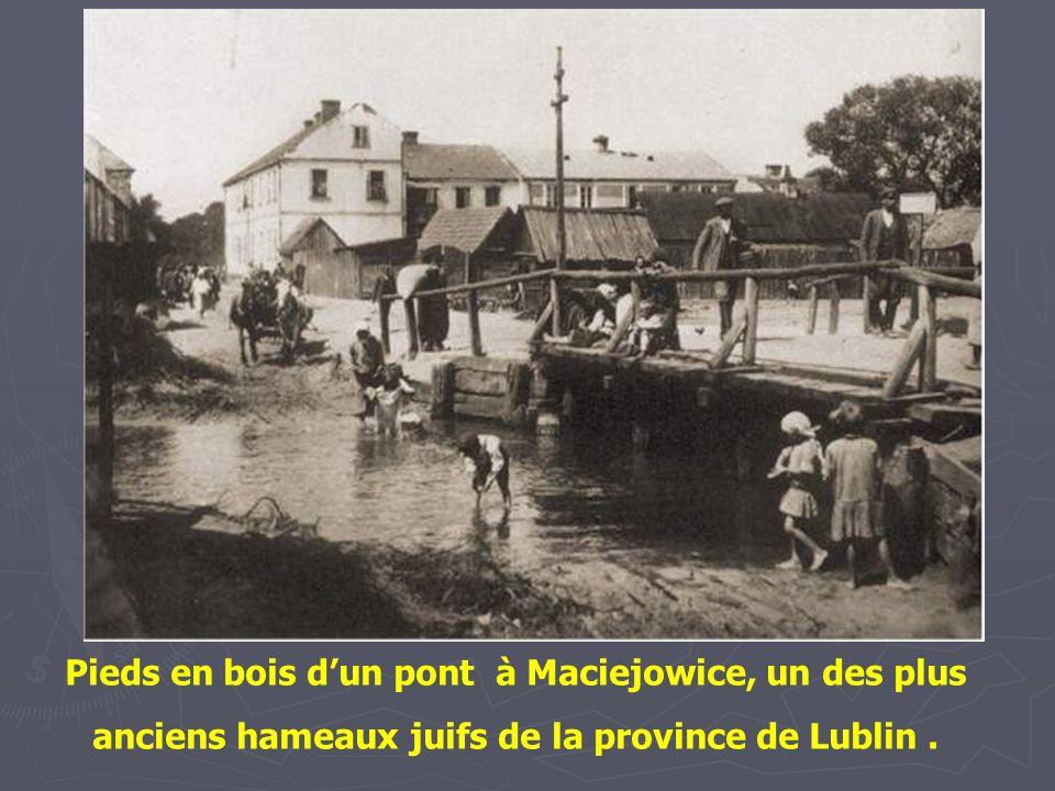 Pieds en bois d'un pont à Maciejowice, un des plus anciens hameaux juifs de la province de Lublin .