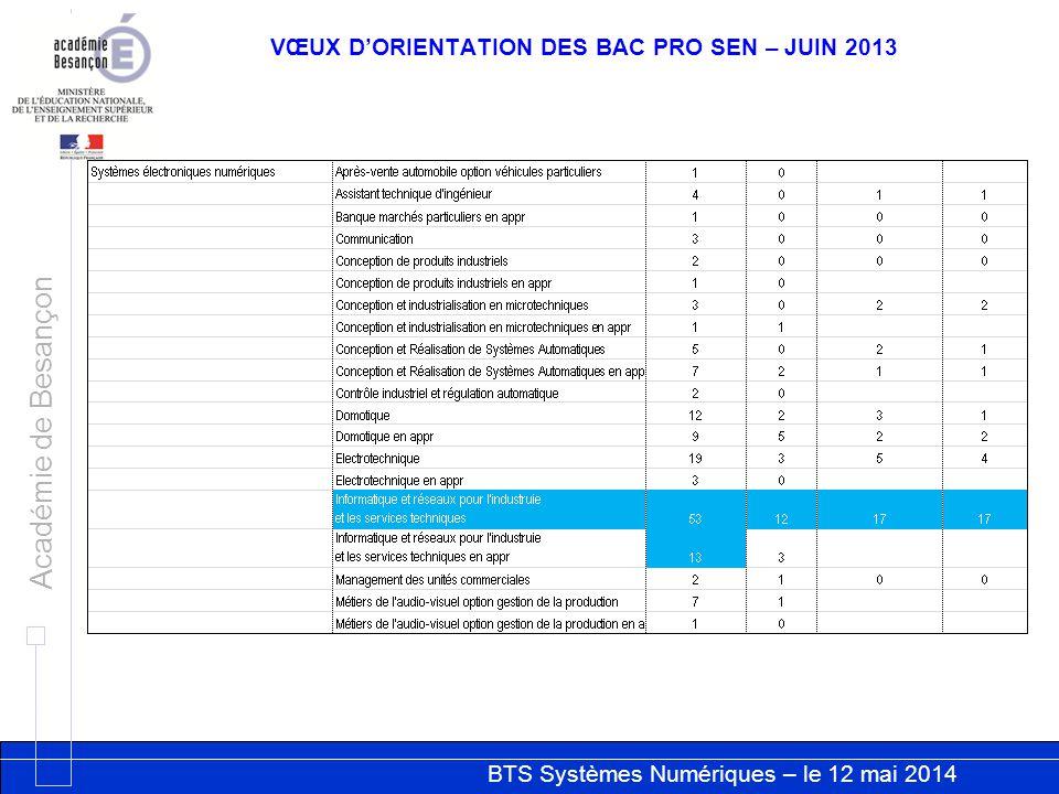 VŒUX D'ORIENTATION DES BAC PRO SEN – JUIN 2013