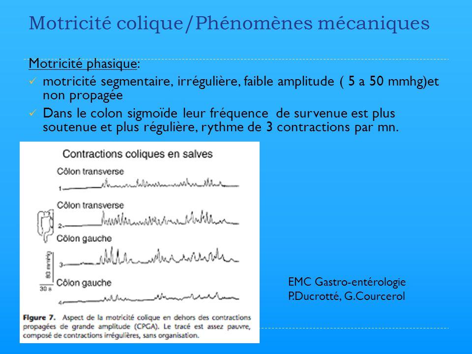 Motricité colique/Phénomènes mécaniques