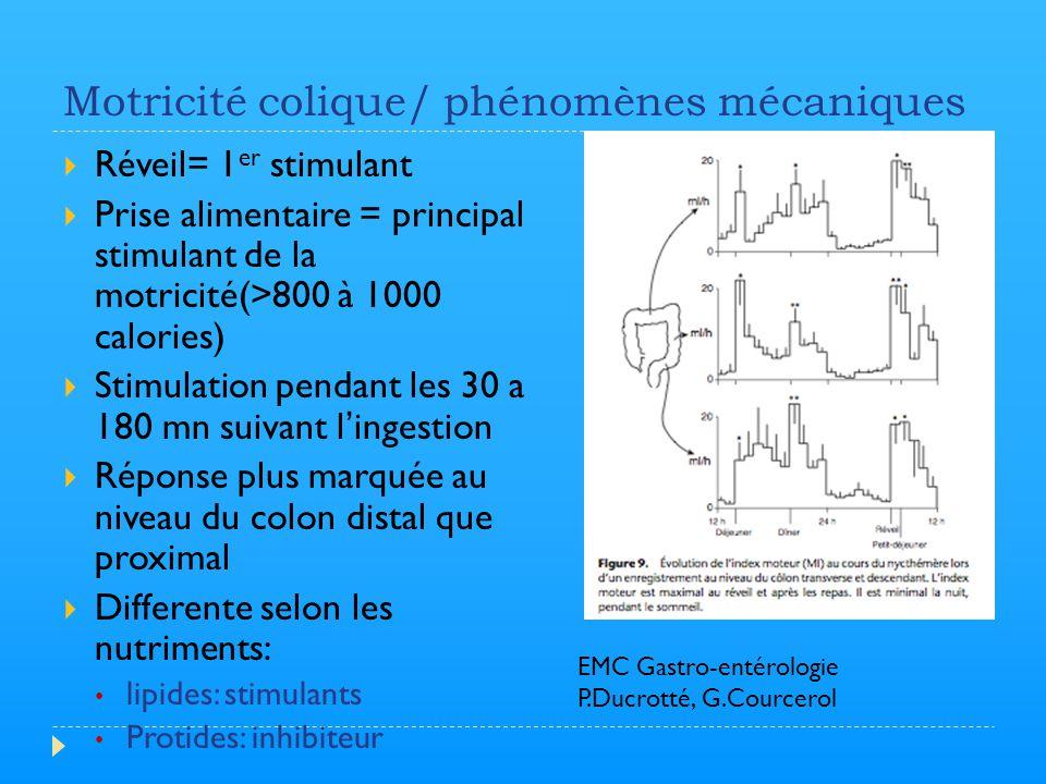 Motricité colique/ phénomènes mécaniques