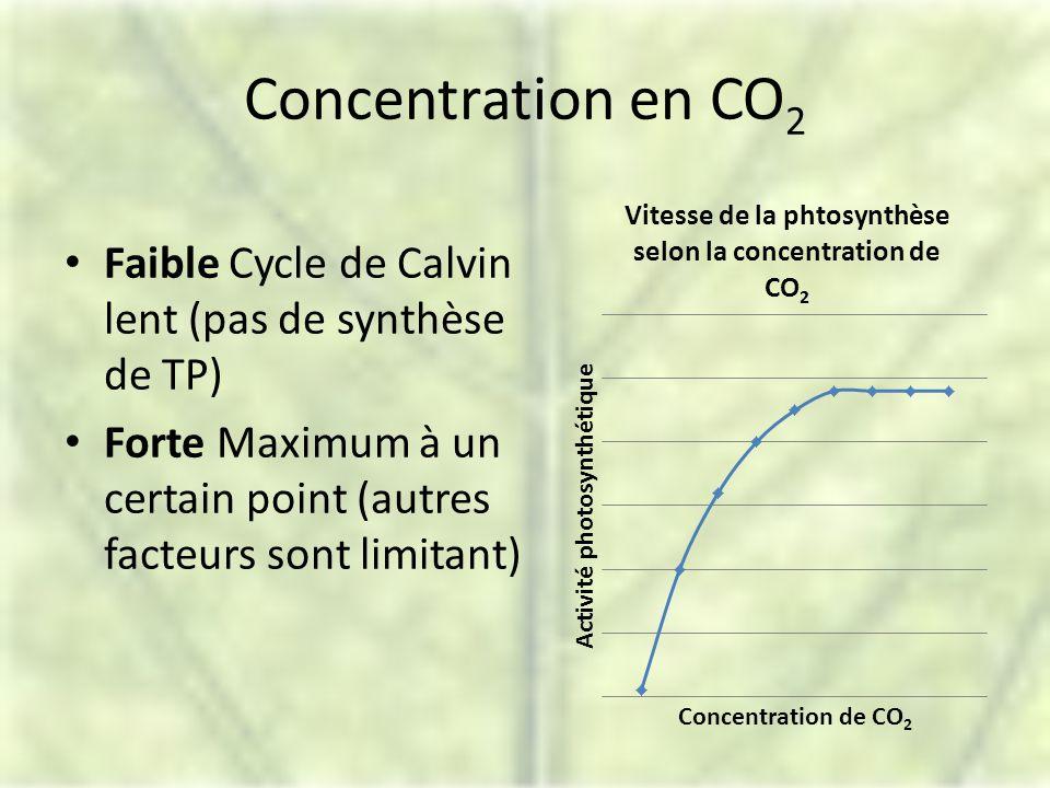Concentration en CO2 Faible Cycle de Calvin lent (pas de synthèse de TP) Forte Maximum à un certain point (autres facteurs sont limitant)