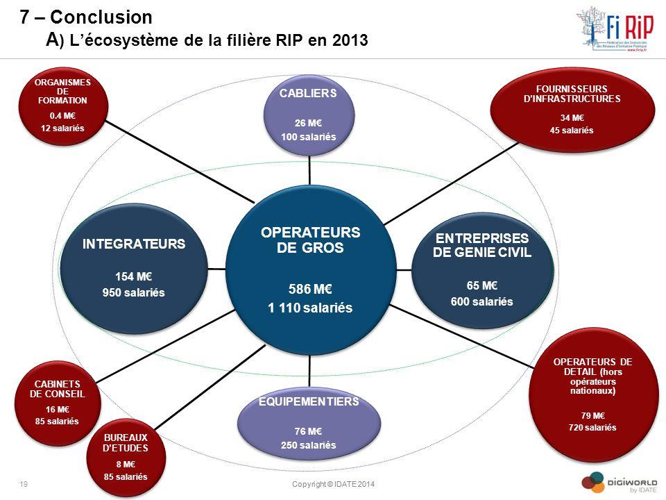 7 – Conclusion A) L'écosystème de la filière RIP en 2013
