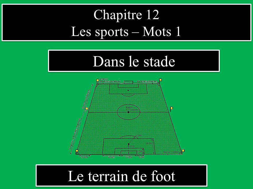 Chapitre 12 Les sports – Mots 1 Dans le stade Le terrain de foot