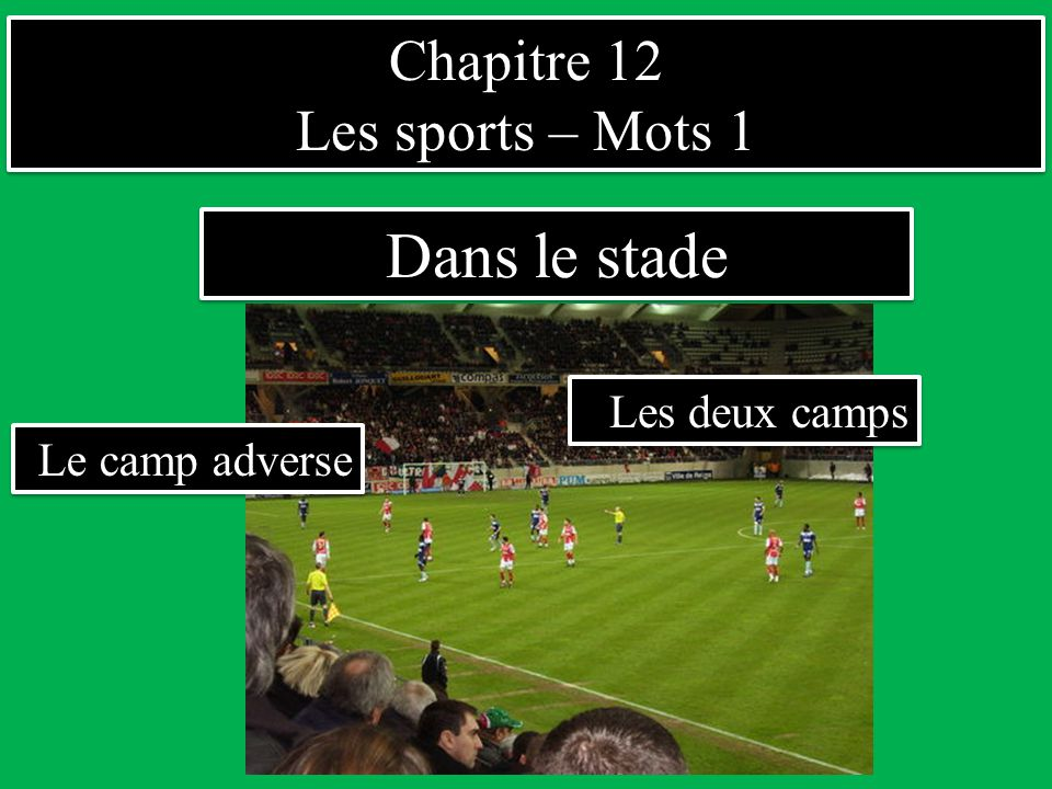 Dans le stade Chapitre 12 Les sports – Mots 1 Les deux camps