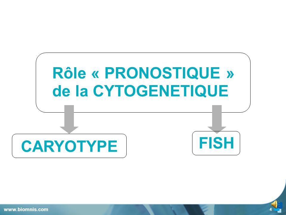 Rôle « PRONOSTIQUE » de la CYTOGENETIQUE FISH CARYOTYPE
