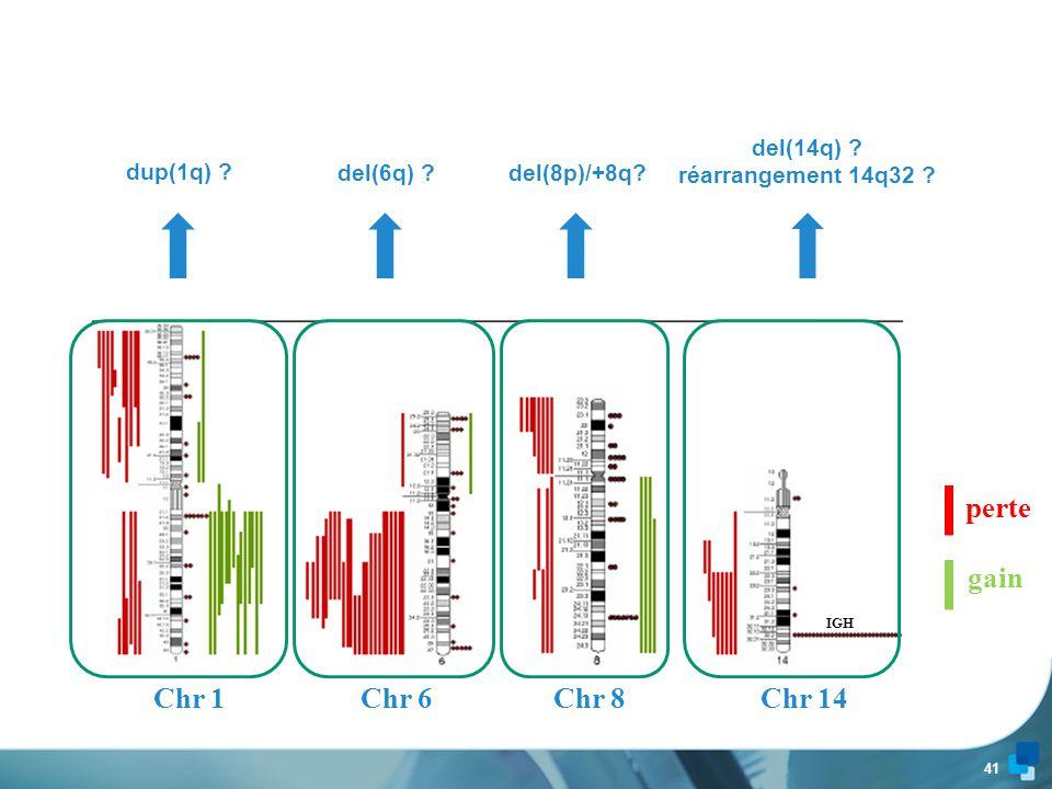 perte gain Chr 1 Chr 6 Chr 8 Chr 14 del(14q) réarrangement 14q32