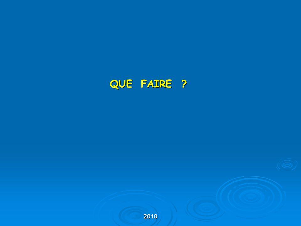 QUE FAIRE 2010