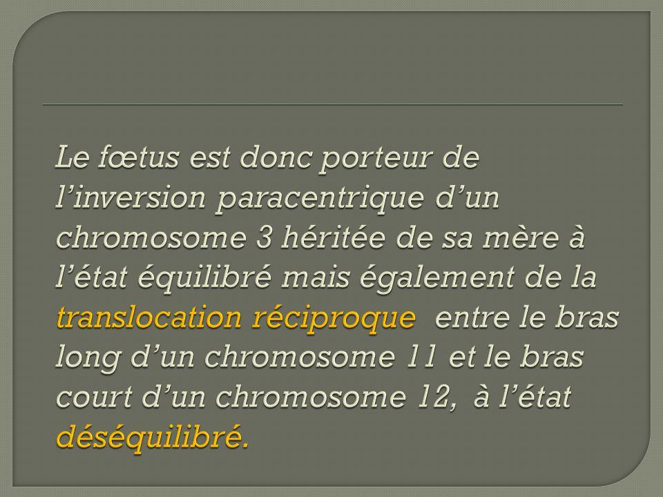 Le fœtus est donc porteur de l'inversion paracentrique d'un chromosome 3 héritée de sa mère à l'état équilibré mais également de la translocation réciproque entre le bras long d'un chromosome 11 et le bras court d'un chromosome 12, à l'état déséquilibré.