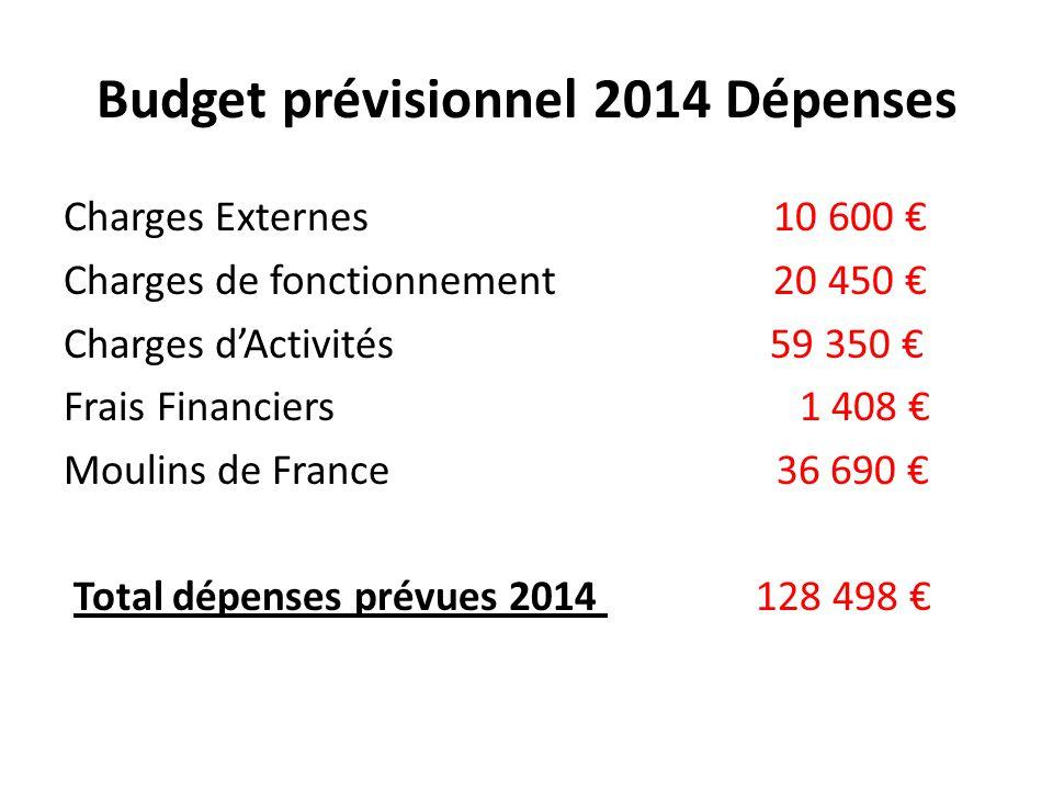 Budget prévisionnel 2014 Dépenses