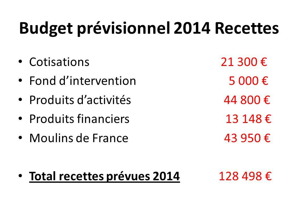 Budget prévisionnel 2014 Recettes