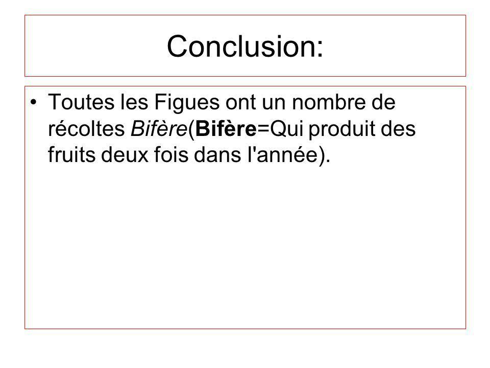 Conclusion: Toutes les Figues ont un nombre de récoltes Bifère(Bifère=Qui produit des fruits deux fois dans l année).