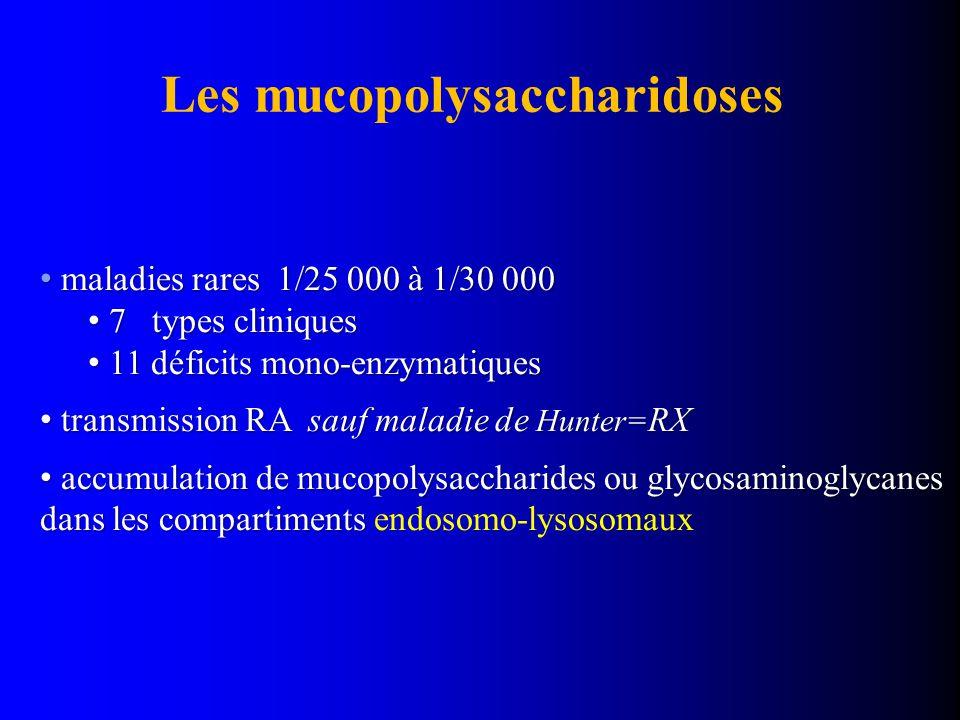 Les mucopolysaccharidoses