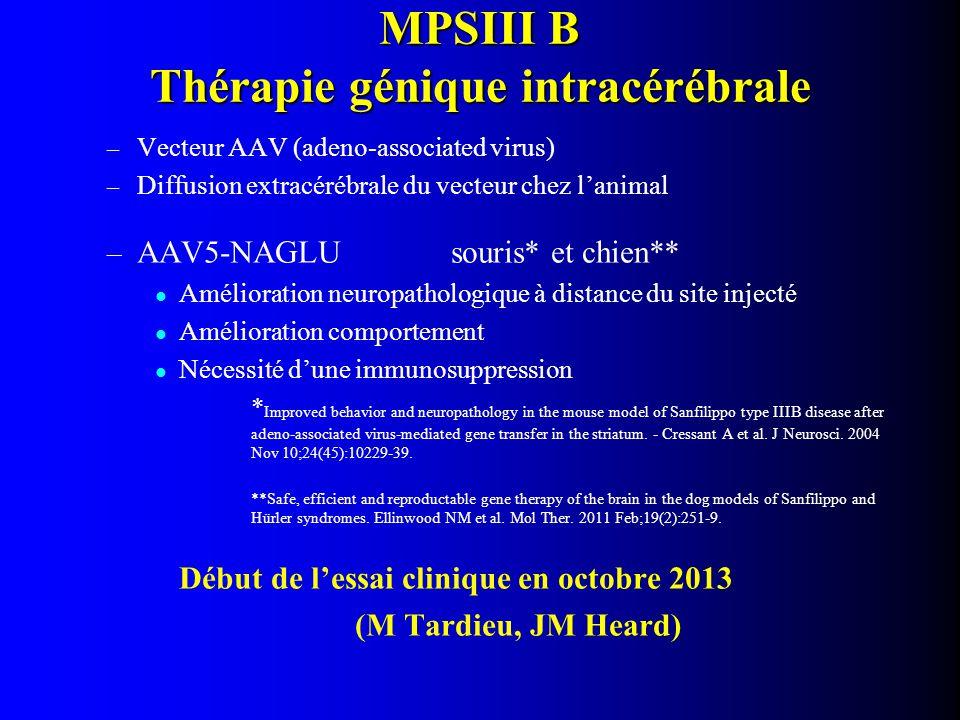 MPSIII B Thérapie génique intracérébrale