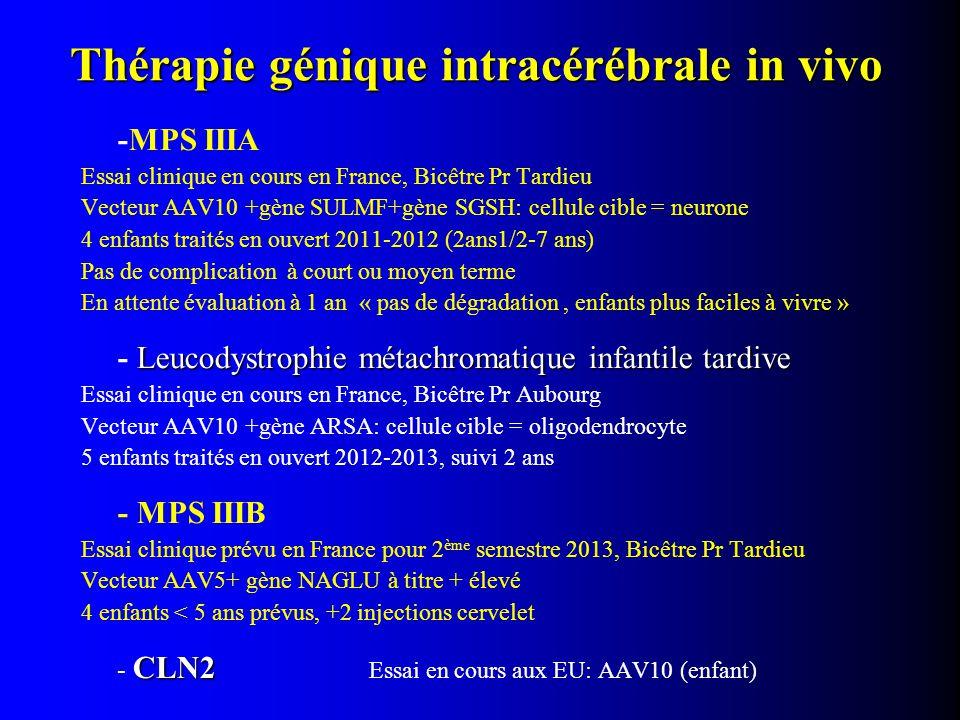 Thérapie génique intracérébrale in vivo