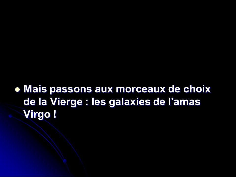 Mais passons aux morceaux de choix de la Vierge : les galaxies de l amas Virgo !