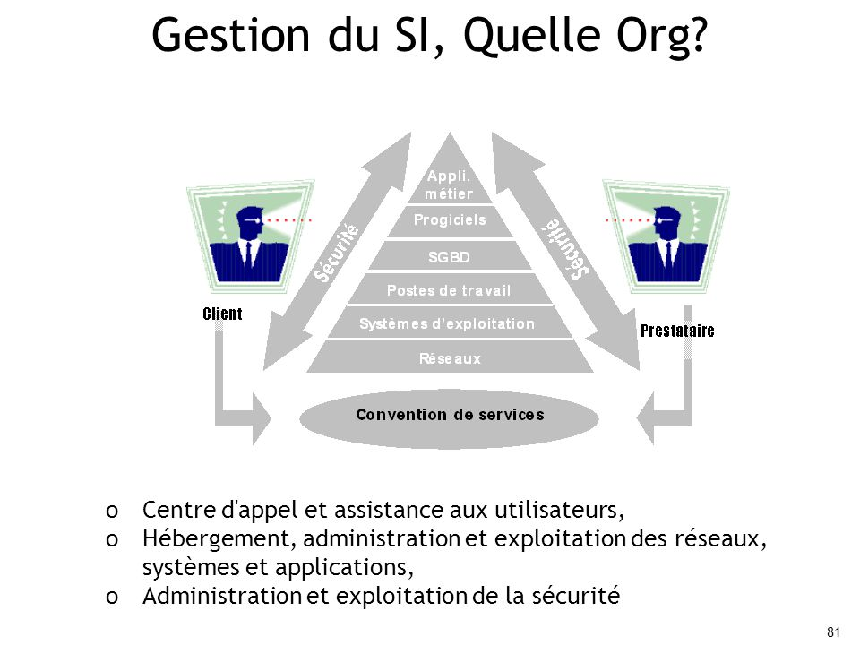 Gestion du SI, Quelle Org