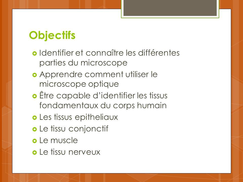 Objectifs Identifier et connaître les différentes parties du microscope. Apprendre comment utiliser le microscope optique.