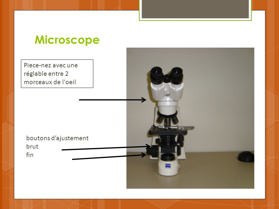 Microscope Piece-nez avec une réglable entre 2 morceaux de l oeil