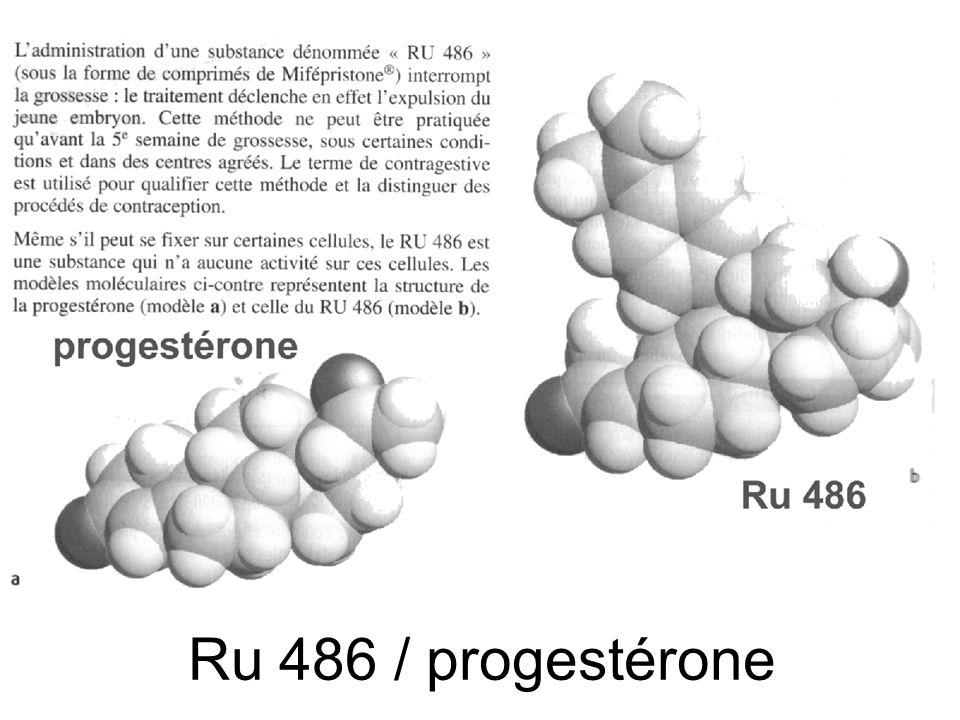 Ru 486 / progestérone