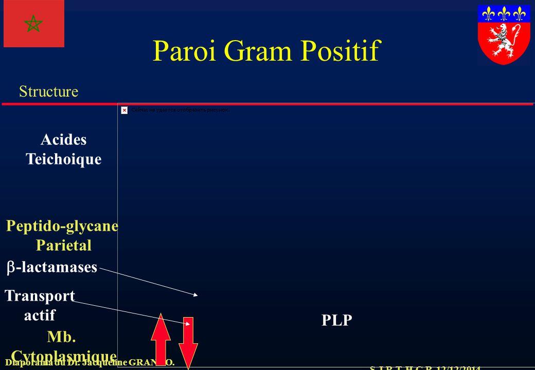 Peptido-glycane Parietal
