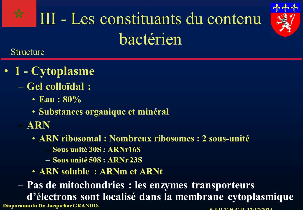 III - Les constituants du contenu bactérien