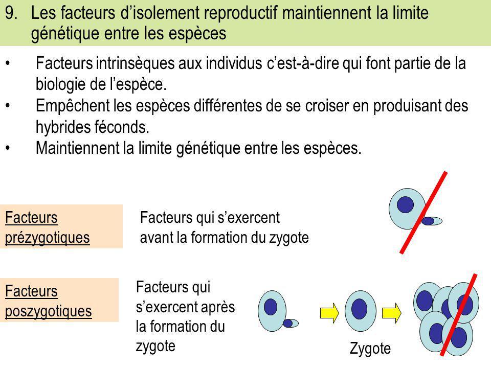 9. Les facteurs d'isolement reproductif maintiennent la limite génétique entre les espèces