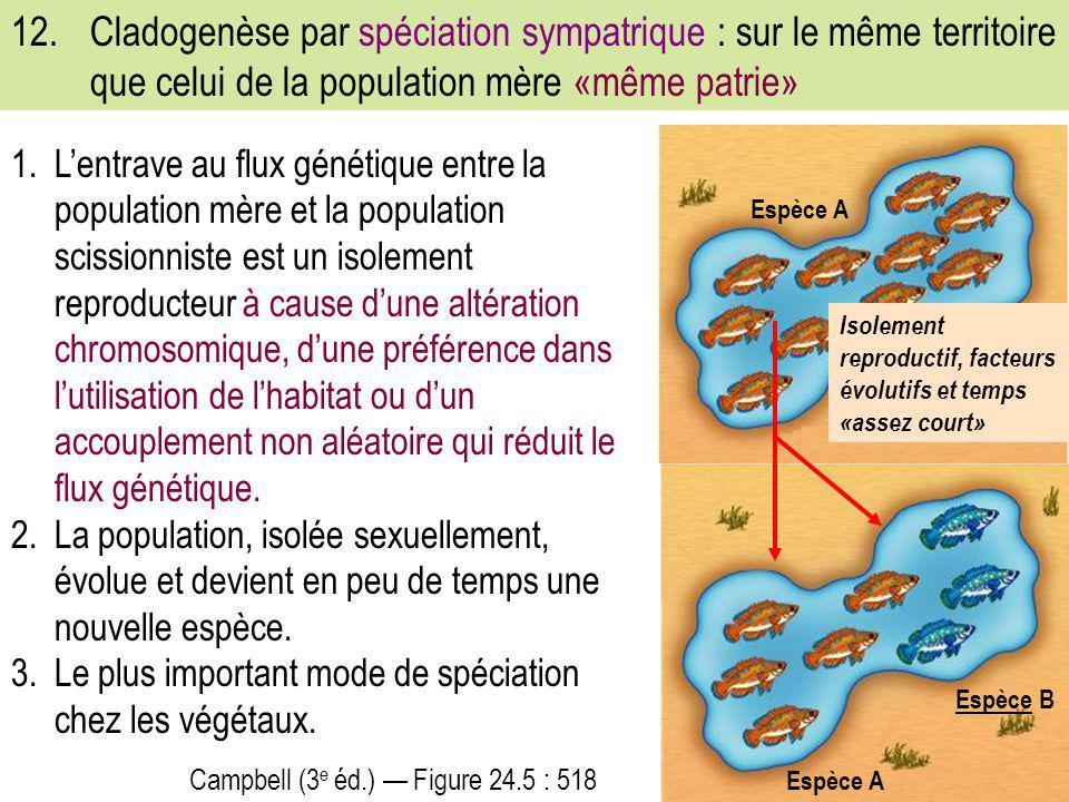 12. Cladogenèse par spéciation sympatrique : sur le même territoire que celui de la population mère «même patrie»