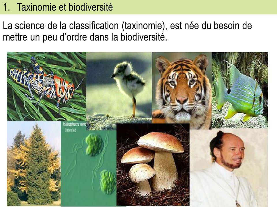 Taxinomie et biodiversité
