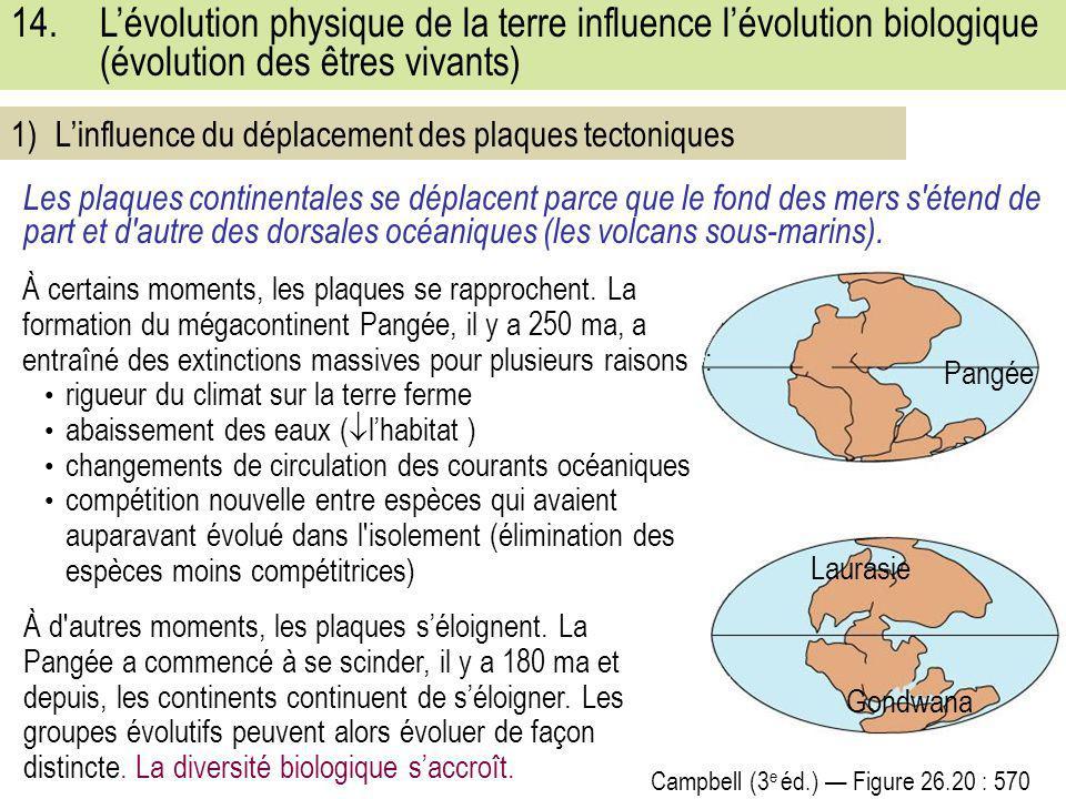 L'évolution physique de la terre influence l'évolution biologique (évolution des êtres vivants)