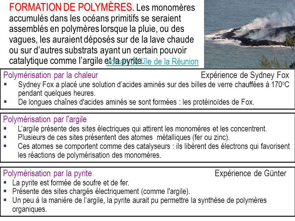 FORMATION DE POLYMÈRES