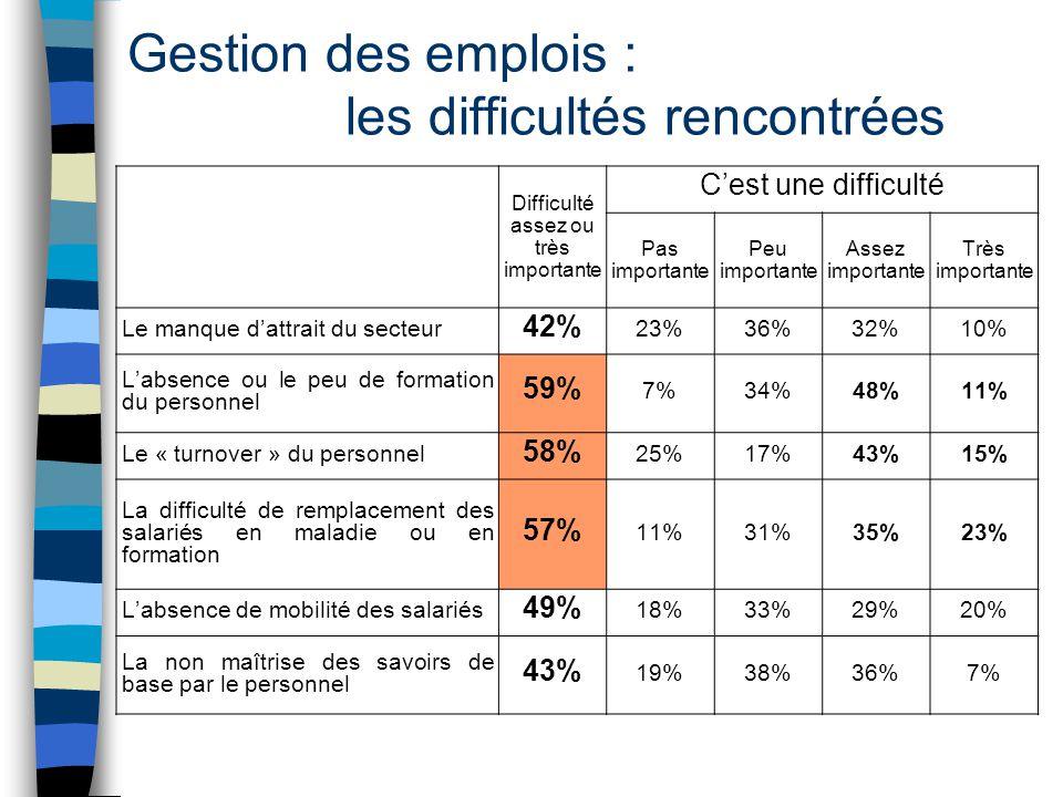 Gestion des emplois : les difficultés rencontrées